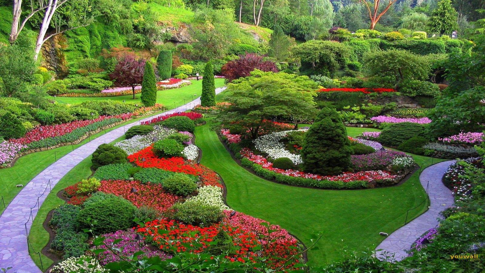 Ландшафтный дизайн сады