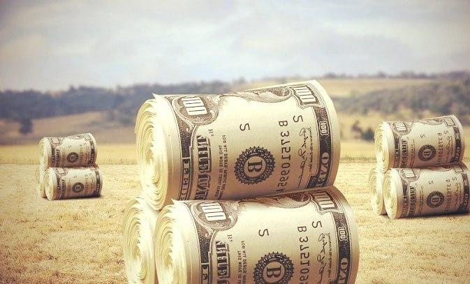 biznes plan fermerskogo xozyajstva 3 - Фермерство как бизнес идея для начинающих