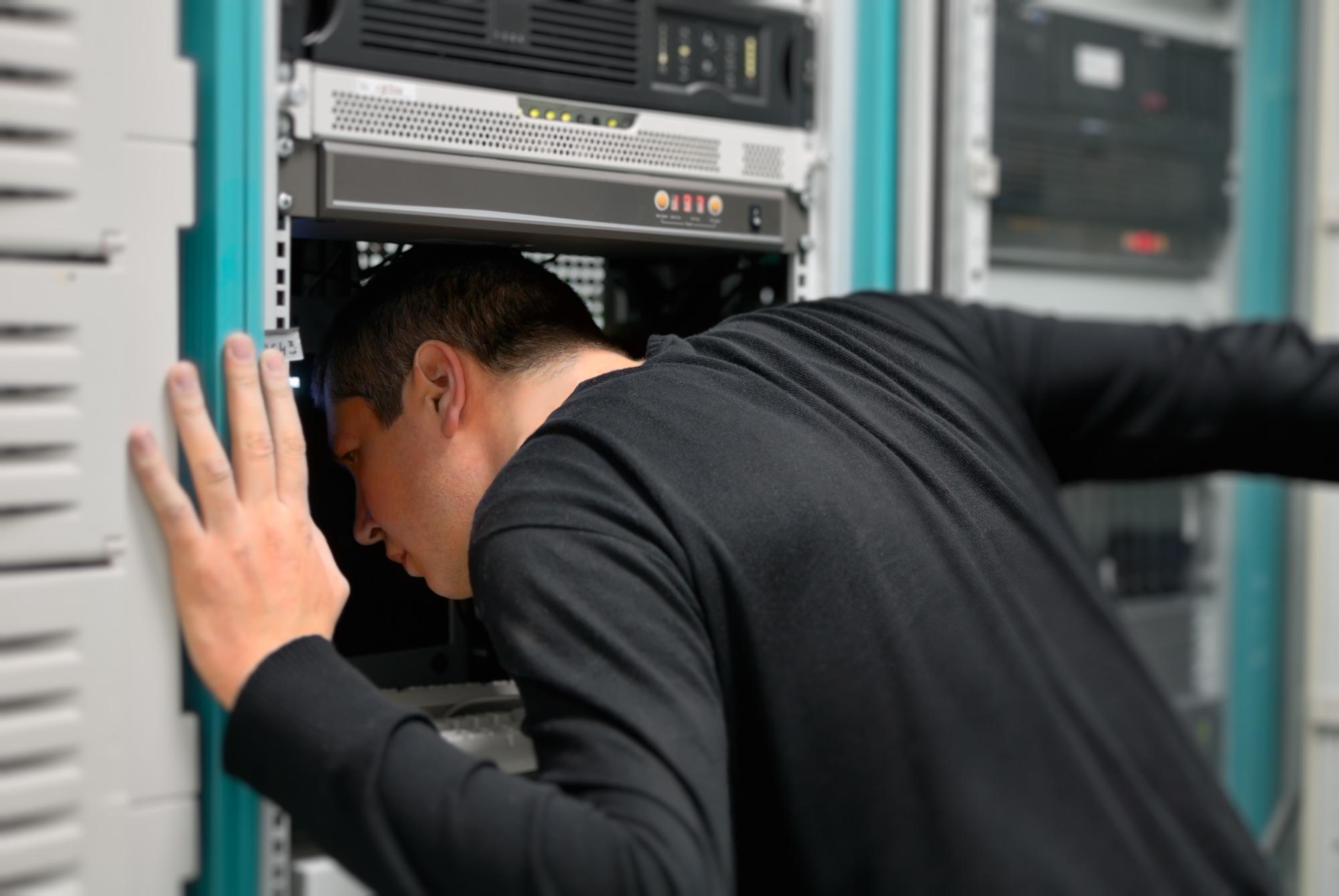веб программист удаленная работа