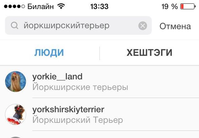 heshtegi v instagram poisk - Как подписывать фото в Instagram, чтобы собирать больше лайков и комментариев?
