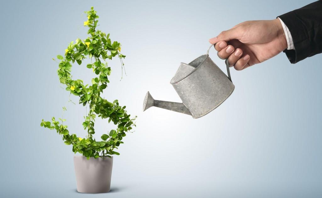 investitsiiii 1024x631 - Как заработать на авито без вложений