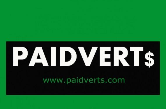 paidverts Portfolio featured Image 1100 x 500 2zyxxwut51944p27vgoydc 1 - Как правильно изменить капчу?