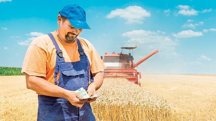 kreditu Sberbanka 2 - Фермерство как бизнес идея для начинающих