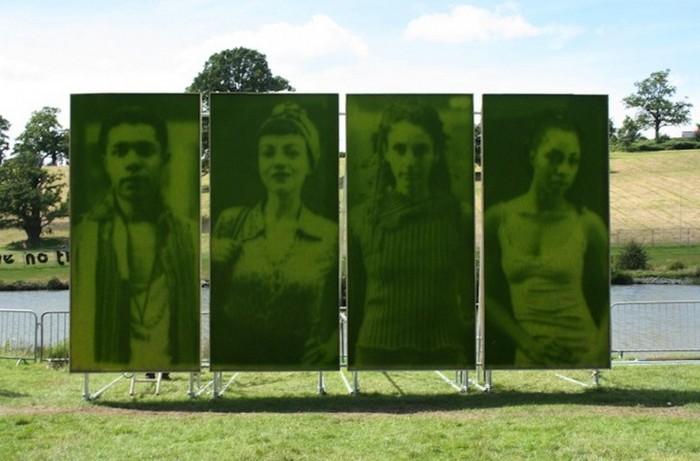 Living Grass Portraits 4 - Топ – 12 самых оригинальных бизнес идей мира