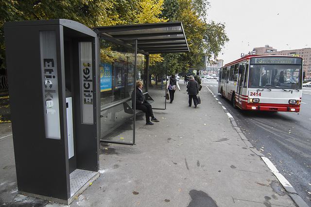 36998060853 df5d9ccb40 z - Как открыть бизнес на интернет терминалах для автобусных остановок с нуля, с чего начать и сколько можно заработать