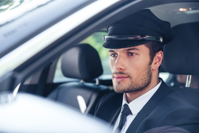 znachok taksi na Hyundai Solaris - Стабильный заработок на автомобильной тематике. Стратегии успешного инвестирования