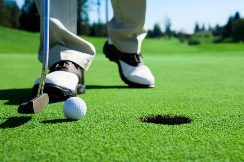 Собственный мини гольф-клуб – перспективы заработка