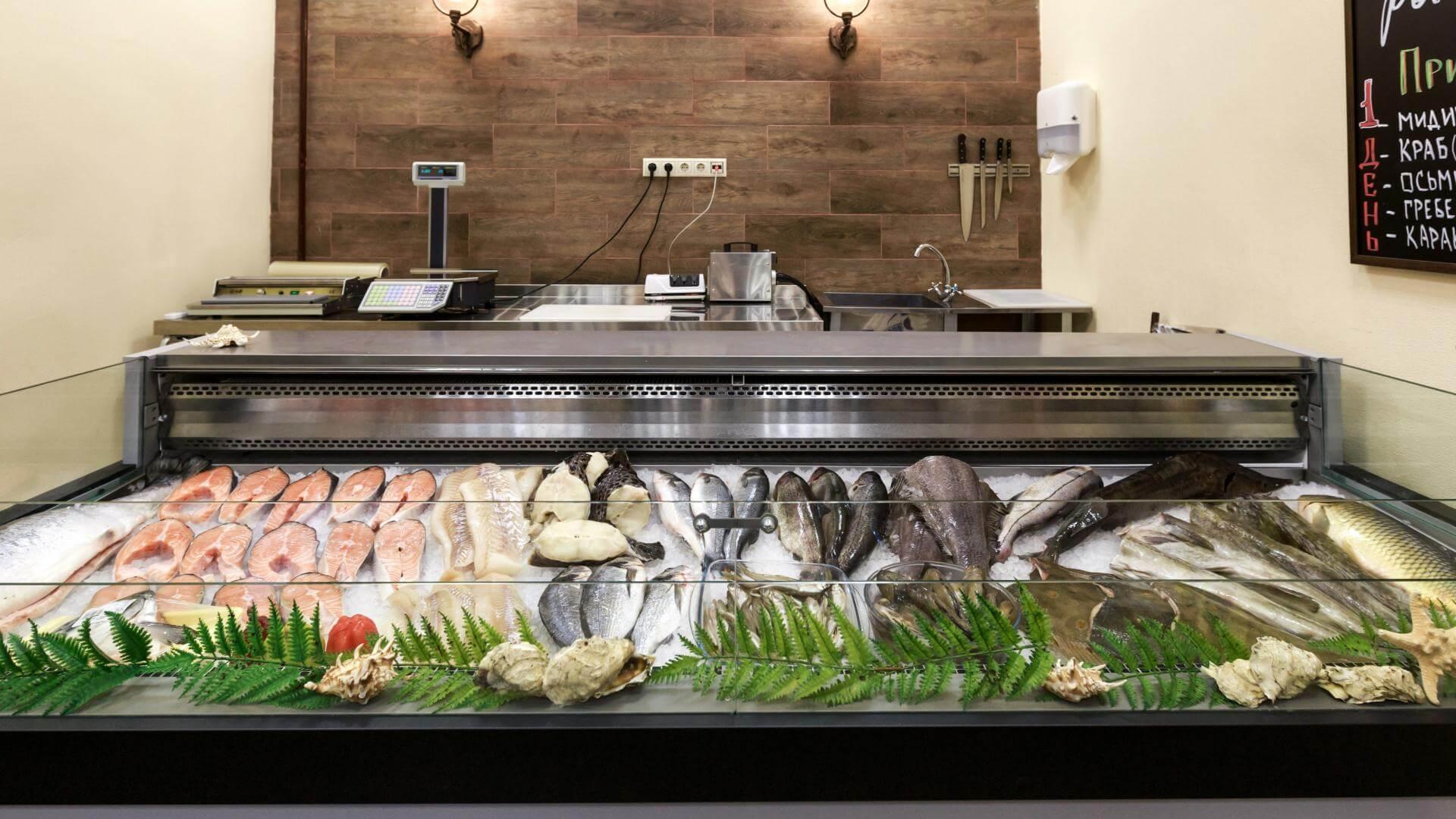 Как открыть рыбный магазин и превратить его в прибыльный бизнес
