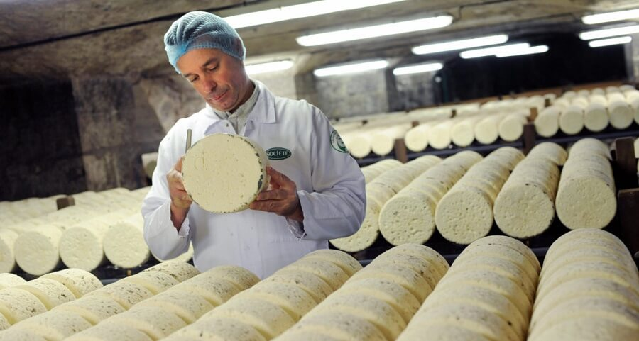 proizvodstvo syra kak biznes - Производство сыра