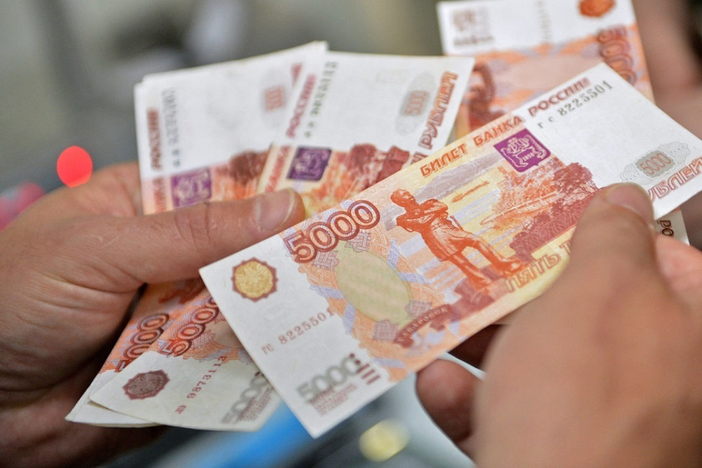 sebestoimost vyrashchivaniya - Разведение индюков — бизнес с перспективой заработка 600 000 в год