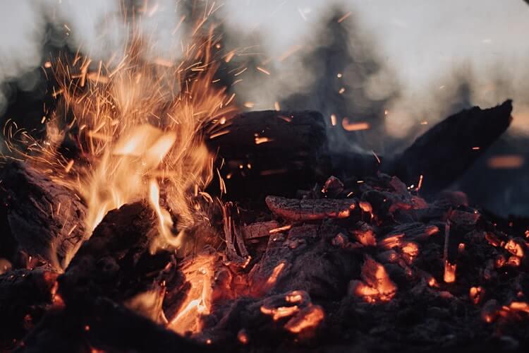 photo 1524856781660 e5c92f4ac62a - Производство 3 видов древесного угля