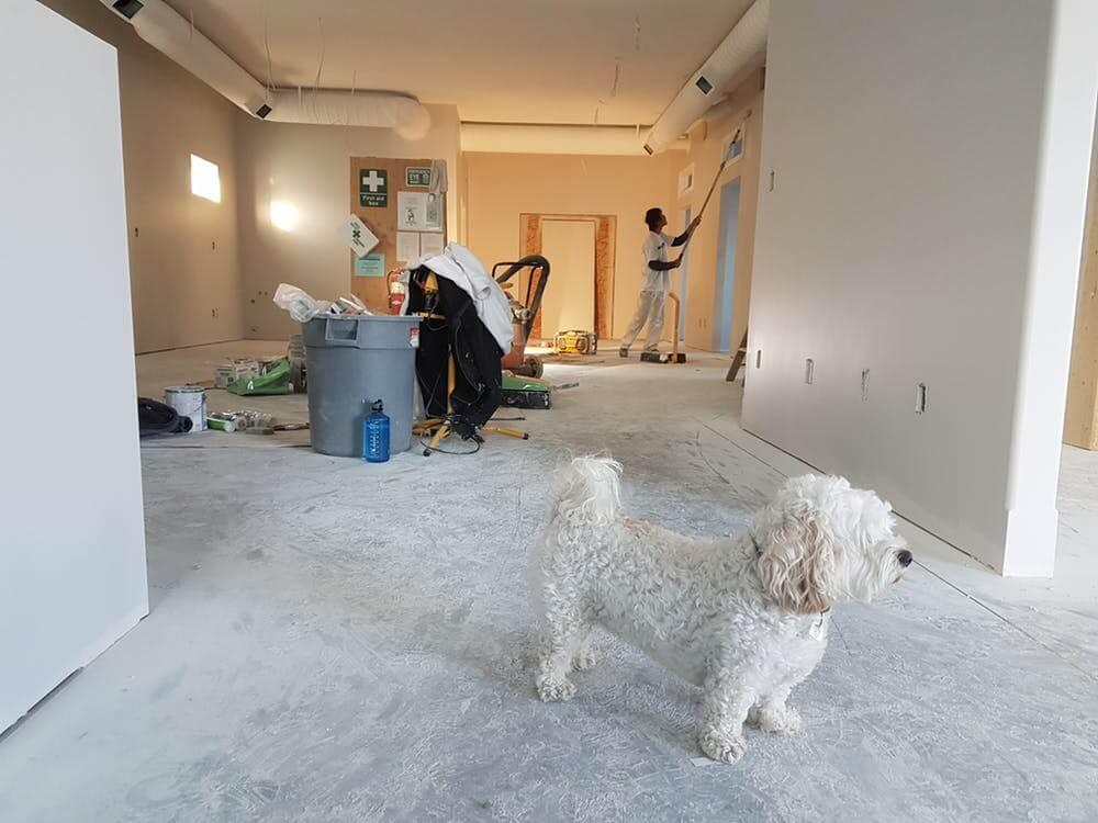 Как зарабатывать на услугах ремонта квартир