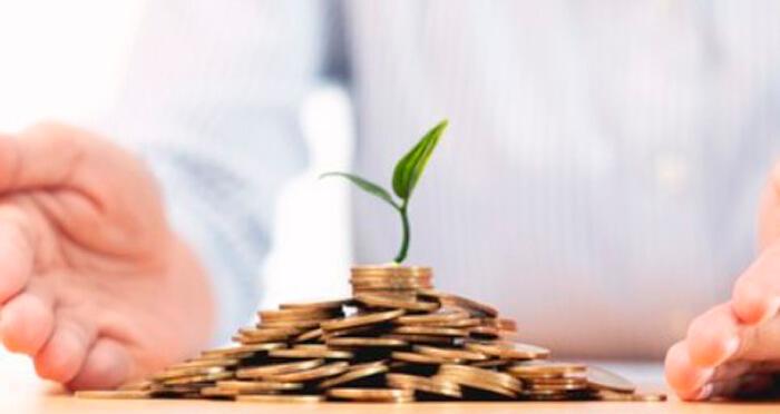 vi1 - Венчурные инвестиции